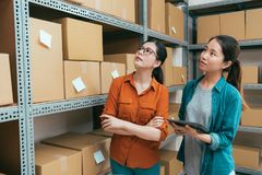 Colega en línea de la compañía de las compras que trabaja junto fotografía de archivo libre de regalías