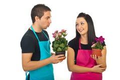 Colegas jovenes de los floristas que tienen conversación Imagen de archivo libre de regalías