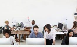 Colegas que hablan en el trabajo en una oficina abierta ocupada del plan foto de archivo libre de regalías