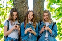Colegiala de tres muchachas adolescente En parque del verano por el árbol En cambio de la escuela En manos sostiene smartphone Lo Imagenes de archivo