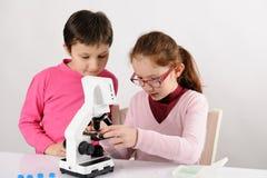 Colegialas con el microscopio moderno Imagen de archivo libre de regalías