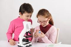 Colegialas con el microscopio moderno Fotos de archivo