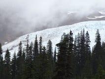 Coleman Glacier, Baker de bâti Image stock