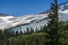 Coleman Glacier Stock Photos