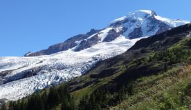 Coleman Glacier on Mount Baker. The view of Coleman Glacier on Mount Baker from Heliotrope Ridge Royalty Free Stock Images