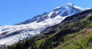 Coleman Glacier no padeiro da montagem Foto de Stock
