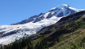 Coleman Glacier no padeiro da montagem Imagens de Stock Royalty Free