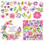 Coleção bonita da flor com teste padrão e grinalda Fotografia de Stock Royalty Free