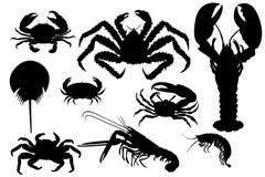 Coleção da silhueta isolada das lagostas Fotos de Stock