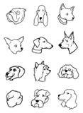 Coleção das cabeças de cão Fotografia de Stock
