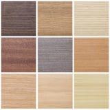 Coleção das texturas de madeira Foto de Stock