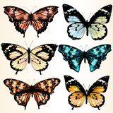 Coleção de borboletas coloridas para o projeto Imagens de Stock