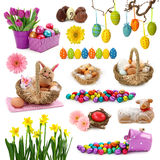 Coleção de Easter Fotografia de Stock Royalty Free