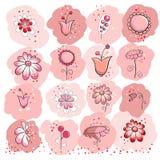 Coleção de flores cor-de-rosa Fotos de Stock Royalty Free