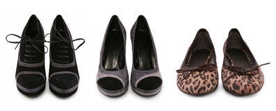Coleção de vários tipos de sapatas fêmeas Imagens de Stock Royalty Free