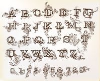 Coleção do inglês ABC do vetor no estilo do vintage com redemoinhos Foto de Stock Royalty Free