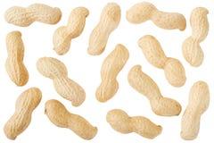 Coleção dos amendoins Fotografia de Stock Royalty Free