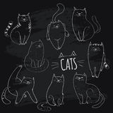 Coleção dos gatos Imagens de Stock