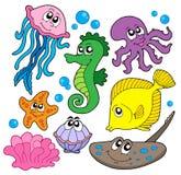 Coleção dos peixes marinhos Fotografia de Stock
