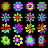 Coleção funky retro da flor Imagem de Stock