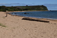 Coles beach devonport tasmania Stock Photos