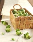Coles de Bruselas en una cesta Imagen de archivo libre de regalías
