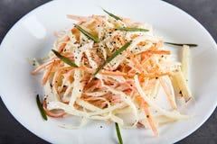 Coleslaw σαλάτα στο άσπρο πιάτο Στοκ εικόνα με δικαίωμα ελεύθερης χρήσης