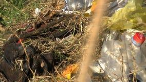 Coleta do vário lixo filme