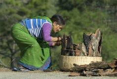 Coletando a madeira Foto de Stock Royalty Free