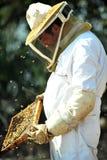 Coletando o mel para Rosh Hashana Fotos de Stock Royalty Free