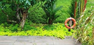Colete salva-vidas de borracha alaranjado no jardim com muitas folhas fundo do verde e espaço da cópia fotos de stock