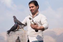 Coletor do pombo que guarda uma gaiola dos pássaros com cuidado Fotos de Stock Royalty Free