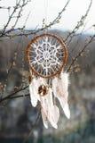Coletor ideal feito a mão com o doily branco no fundo do branche Fotografia de Stock Royalty Free
