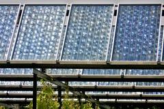 Coletores solares Fotografia de Stock