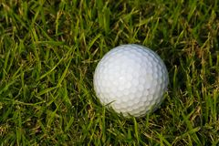 Colf ball on grass Stock Photography