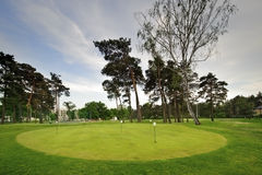 Colf course on coutryside. Golf course field with trees on countryside Stock Photos