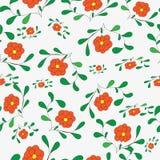 Colful-Hintergrund mit Blumen Stockfotografie