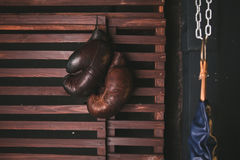 Colgante de los guantes de boxeo Foto de archivo