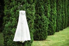 Colgante del vestido de boda solo en el árbol foto de archivo