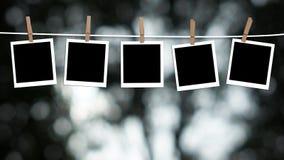 Colgante en blanco de las fotografías Imagen de archivo libre de regalías