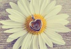 Colgante - flor del corazón y de la manzanilla Fotos de archivo libres de regalías