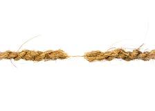 Colgante por una cuerda de rosca Imágenes de archivo libres de regalías