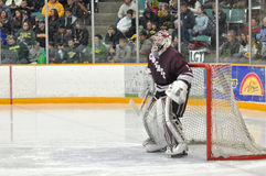 Colgate Alex Evin in NCAA Hockey Game Royalty Free Stock Image