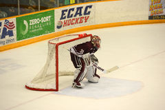 Colgate Goalie #31 in NCAA Hockey Game Stock Image