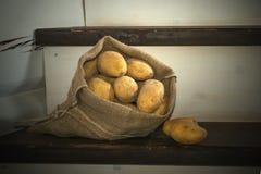 Colha batatas no saco de serapilheira no fundo rústico Imagens de Stock Royalty Free