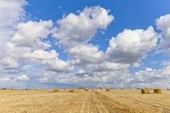 Colha a paisagem com os pacotes da palha entre campos no outono imagem de stock