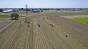Colheita Amish dos fazendeiros fotos de stock royalty free