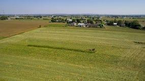 Colheita Amish dos fazendeiros fotografia de stock