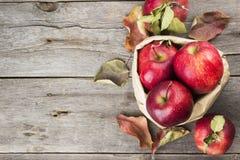 Colheita das maçãs em um pacote de papel em um fundo de madeira escuro Foto de Stock