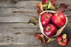 Colheita das maçãs em um pacote de papel em um fundo de madeira escuro Imagens de Stock